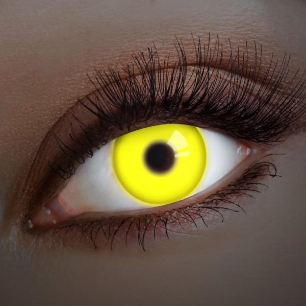 Yellow UV Shock