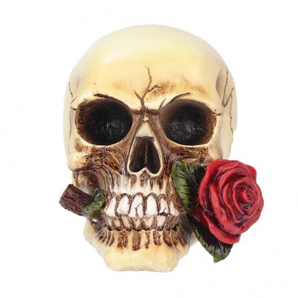 Totenkopf & Rose Spardose